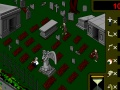 Gioco Grave Robber on-line - giochi online