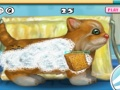 Gioco My Sweet Kitten on-line - giochi online