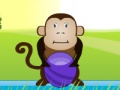 Gioco Hungry Monkey on-line - giochi online
