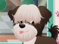 Gioco Doggy Salon on-line - giochi online