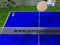 Gioco Ping - Pong on-line - giochi online